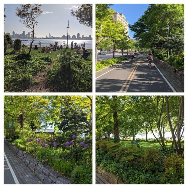 greenway 3 path trees
